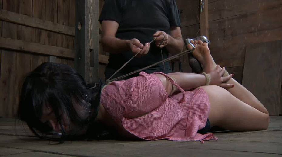 Chick with tied up tits is punished in the basement - 6. pic