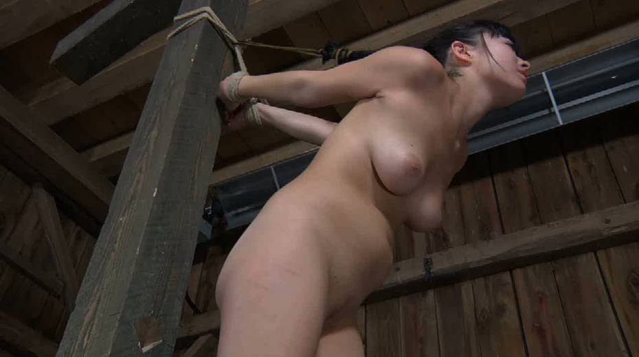 Chick with tied up tits is punished in the basement - 14. pic