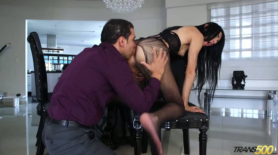 Shemale in ripped pantyhose Lana Davalos rides a dick and gives a blowjob - 6. pic