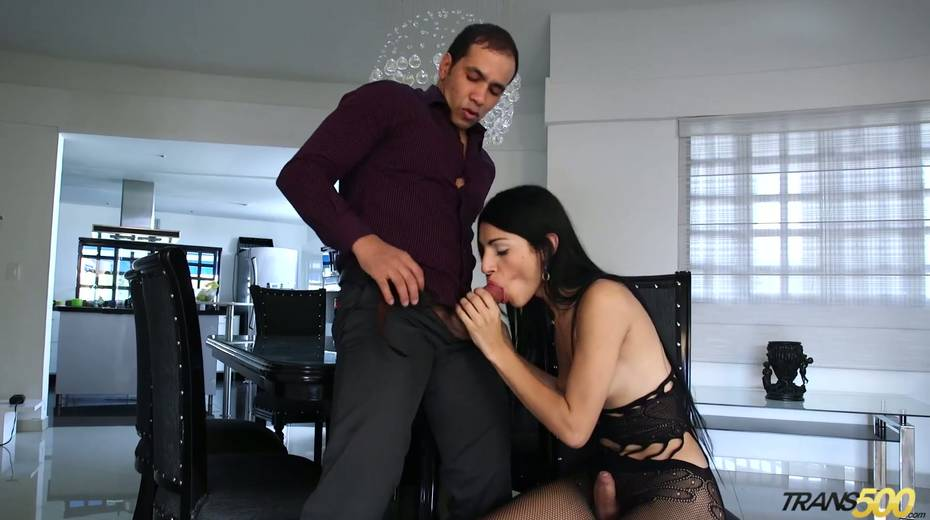 Shemale in ripped pantyhose Lana Davalos rides a dick and gives a blowjob - 8. pic